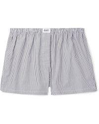 Les Girls, Les Boys Striped Cotton Boxer Shorts - Black