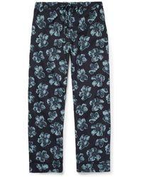 Desmond & Dempsey - Victor Printed Cotton Pyjama Trousers - Lyst