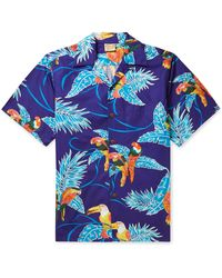 Go Barefoot Tropical Birds Camp-collar Printed Cotton Shirt - Blue