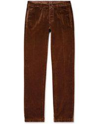 Massimo Alba Cotton-velvet Pants - Brown