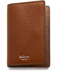 Mulberry Card Case In Oak Natural Grain Leather - Brown