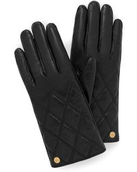 Mulberry Quilted Nappa Gloves In Black Nappa Leather