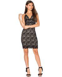Nightcap Stretch Lace Slip Dress - White