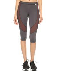 VPL Flexure Capri Legging - Gray