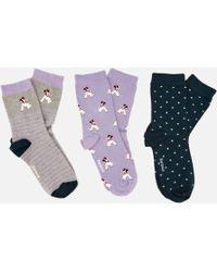 Barbour - Terrier Socks Giftbox - Lyst