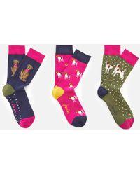 Joules - Brilliant Bamboo 3 Pack Socks Set - Lyst