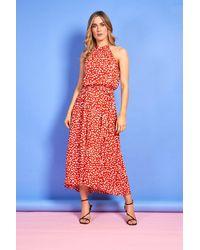 mykindofdress Bea Animal Print Halterneck Dress - Multicolour
