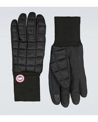 Canada Goose Handschuhe Northern Glove Liner - Schwarz