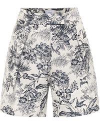 Erdem Howard High-rise Cotton-blend Shorts - Blue