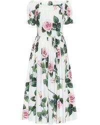 Dolce & Gabbana Abito midi a stampa floreale in cotone - Multicolore