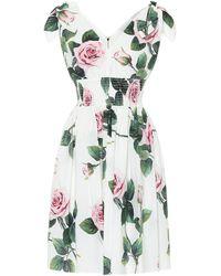 Dolce & Gabbana Floral Cotton Dress - Multicolour
