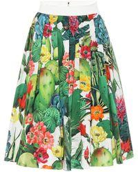 Dolce & Gabbana Exclusivo en Mytheresa – falda midi de algodón - Verde