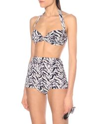 Norma Kamali Braga de bikini Bill con print de cebra - Azul