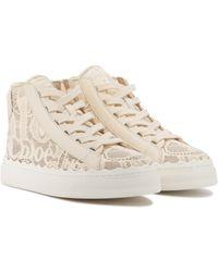 Chloé Lauren Lace Sneakers - Natural