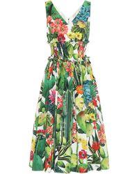 Dolce & Gabbana Exklusiv bei Mytheresa – Midikleid aus Baumwollpopeline - Grün