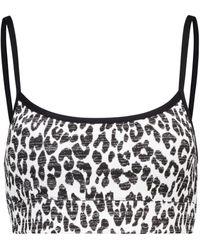 The Upside - Natacha Leopard-print Sports Bra - Lyst