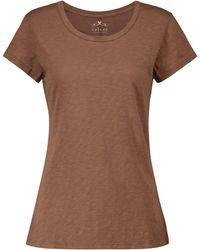 Velvet Camiseta Odelia de algodón - Marrón