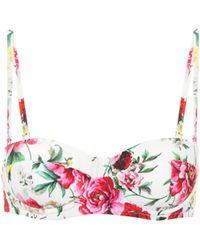 Dolce & Gabbana Bedrucktes Bikini-Oberteil - Pink
