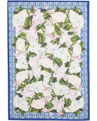 Dolce & Gabbana Bedruckter Schal mit Kaschmiranteil - Grün