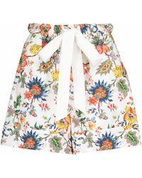 Erdem Vacation - Shorts Maui in cotone con stampa - Multicolore