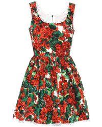 Dolce & Gabbana Miniabito a stampa floreale in cotone - Rosso