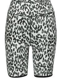 The Upside Shorts Dance con print de leopardo - Multicolor