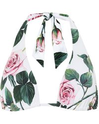 Dolce & Gabbana Top de bikini floral cuello halter - Multicolor
