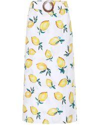 Alexandra Miro Exclusive To Mytheresa – Isla Printed Cotton Midi Skirt - Multicolour