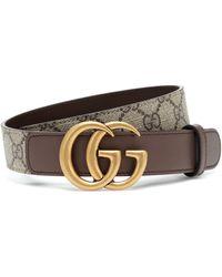 Gucci Cinturón GG Supreme - Multicolor