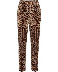 Dolce & Gabbana Printed High-rise Straight Pants - Brown