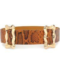 Rejina Pyo Luna Python-effect Leather Belt - Orange