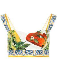 Dolce & Gabbana Printed Cotton Bralette - Multicolour