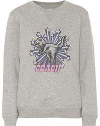 COACH - Printed Cotton Sweatshirt - Lyst