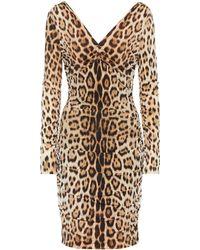 Roberto Cavalli Leopard-print Dress - Multicolor