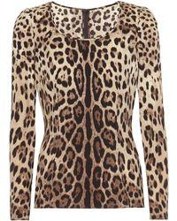 Dolce & Gabbana Leopard-print Stretch-silk Crêpe Top - Multicolor