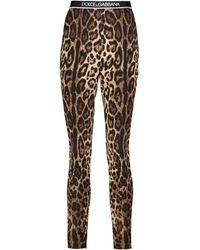 Dolce & Gabbana Leggings en seda elástica - Multicolor