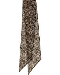 Saint Laurent Leopard-print Silk Muslin Scarf - Black