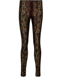 Versace Snake-print leggings - Multicolour