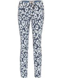 Roberto Cavalli Leopard-printed Jeans - Blue