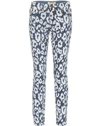 Roberto Cavalli Leopard-printed Jeans - Blue