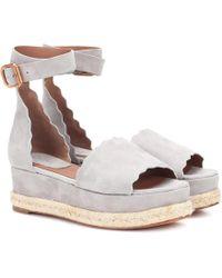 Chloé Lauren Suede Platform Sandals - Gray