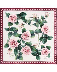 Dolce & Gabbana Floral Silk Scarf - Multicolour
