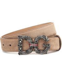 Dolce & Gabbana Dg Suede Belt - Brown
