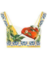 Dolce & Gabbana - Bralette a stampa in cotone - Lyst