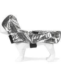 Moncler Genius X Poldo chaleco para perros - Metálico