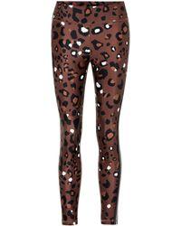 The Upside Side-stripe Leopard-print Leggings - Brown