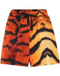 Dries Van Noten Shorts con estampado de tigre - Naranja