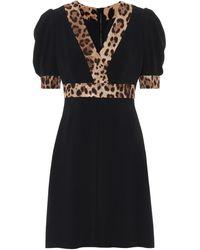 Dolce & Gabbana Leopard Print Trimmed Flared Dress - Black