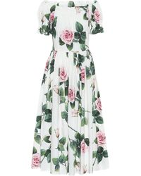 Dolce & Gabbana Rose-print Off-the-shoulder Cotton-poplin Dress - Multicolour