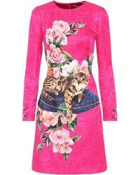 Dolce & Gabbana Printed Brocade Dress - Pink